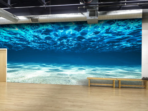 Underwater View of Tropical Beach Wall Mural #6124