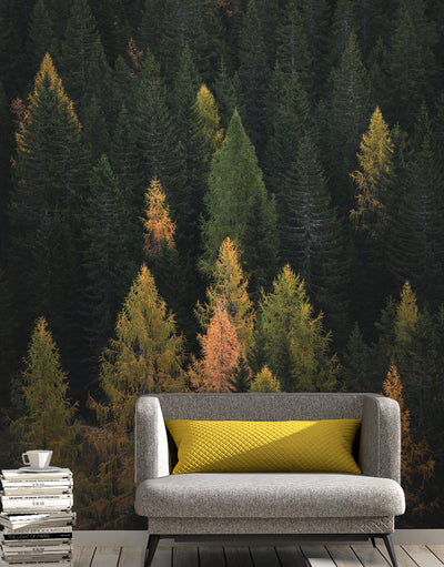 Enchanted Forest Tree Woodland Peel and Stick Wallpaper | Removable Wall Mural #6203