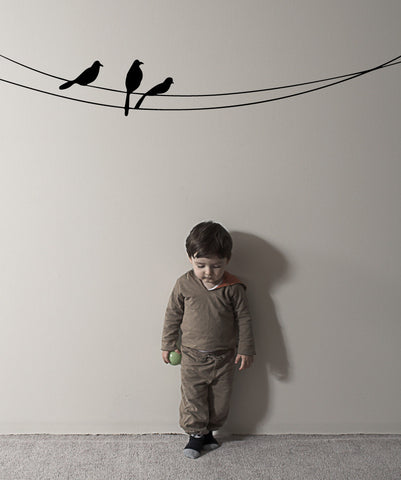 Vinyl Wall Decal Sticker Birds on the Wire #OS_MB509