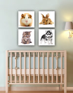 Cute Baby Pets collection on Canvas (set of 4): by APE CANVAS #C102