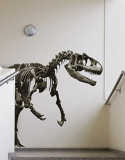 Graphic Vinyl Wall Decal Dinosaur Raptor #MMartin153