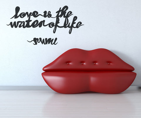 Vinyl Wall Decal Sticker Love is the Water of Life #OS_MB283