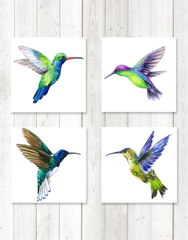 Hummingbird Posters (set of 4) Unframed. Great wall decor for Nursery Room, Bedroom, Bathroom, Kitchen, Living Room, or Dinning Room. #P1004