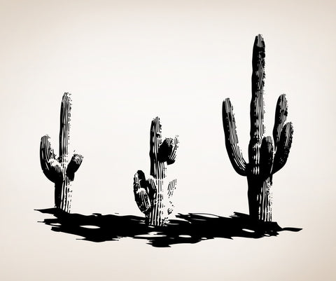 Vinyl Wall Decal Sticker Cactus Plants #OS_AA348