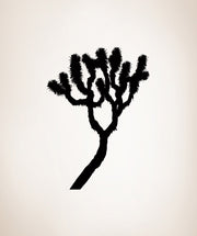 Vinyl Wall Decal Sticker Joshua Tree #AC210