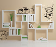 Vinyl Wall Decal Sticker Kitty Cats #OS_DC351