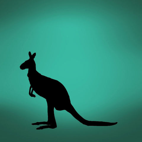 Vinyl Wall Decal Sticker Kangaroo #507