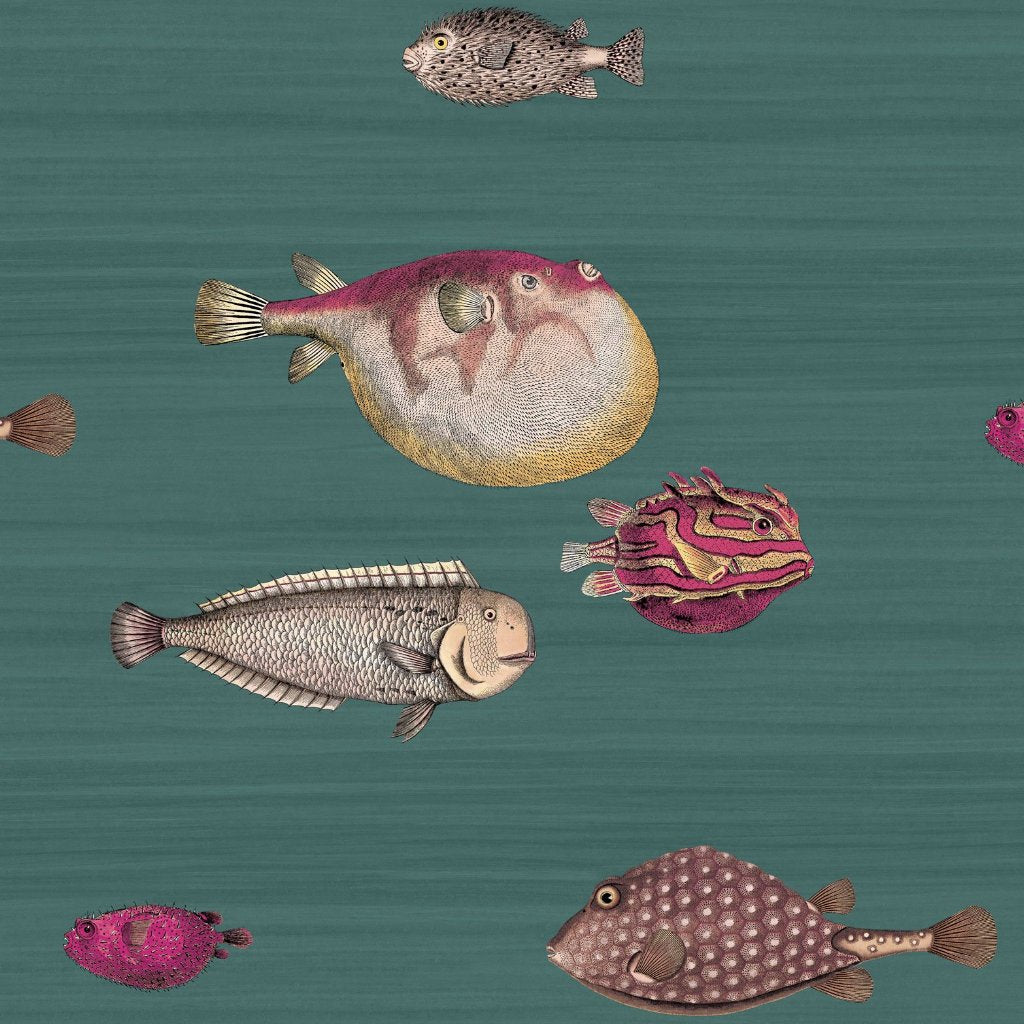 Cole & Son Acquario Wallpaper 114/12024