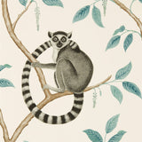 Sanderson Wallpaper | Ringtailed Lemur 216665