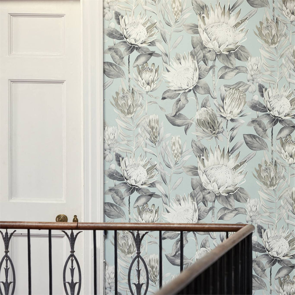 King Protea Wallpaper 216645