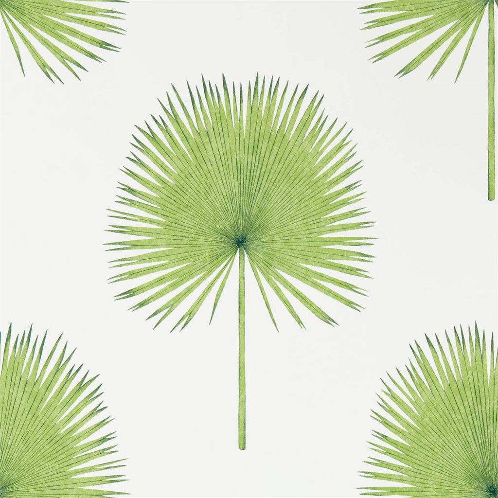 Fan Palm Wallpaper by Sanderson 216636