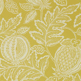 Cantaloupe Wallpaper in Caraway | Sanderson Wallpaper