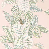 Sanderson Wallpaper Australia .Calathea Wallpaper