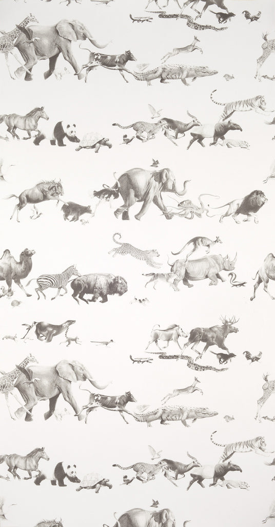 Animals Wallpaper by Beware the Moon. 52 beautiful animals. 10m x 52cm wallpaper rolls. Samples available.