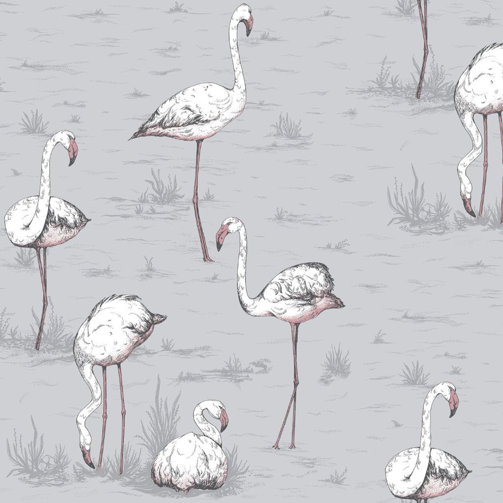 Cole & Son Flamingos Wallpaper 112/11040 | Australia