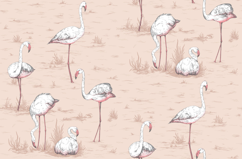 Cole & Son Flamingos Wallpaper Australia 112/11039