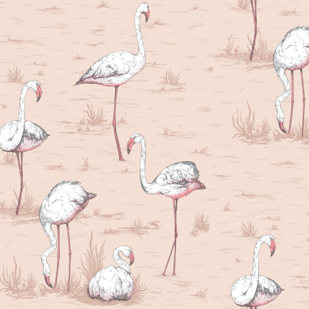 Cole & Son Flamingos Wallpaper 112/11039 | Australia