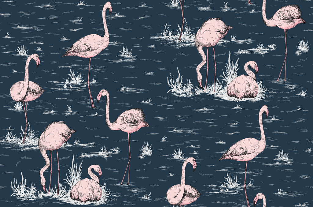 Flamingos Wallpaper 112/10041 Cole & Son