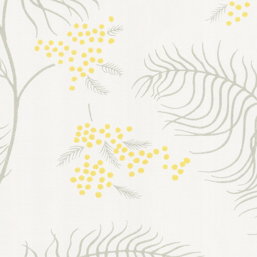 Cole & Son Mimosa Wallpaper 68/8132