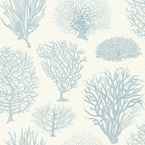 Seafern Wallpaper 107/2009. Cole & Son Australia