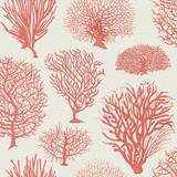 Cole & Son Wallpaper Australia. Seafern 107/2011