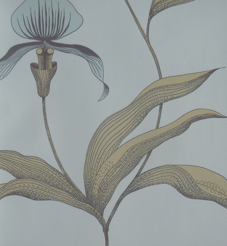 Cole & Son Orchid Wallpaper 66/4026 from the Contemporary Collection