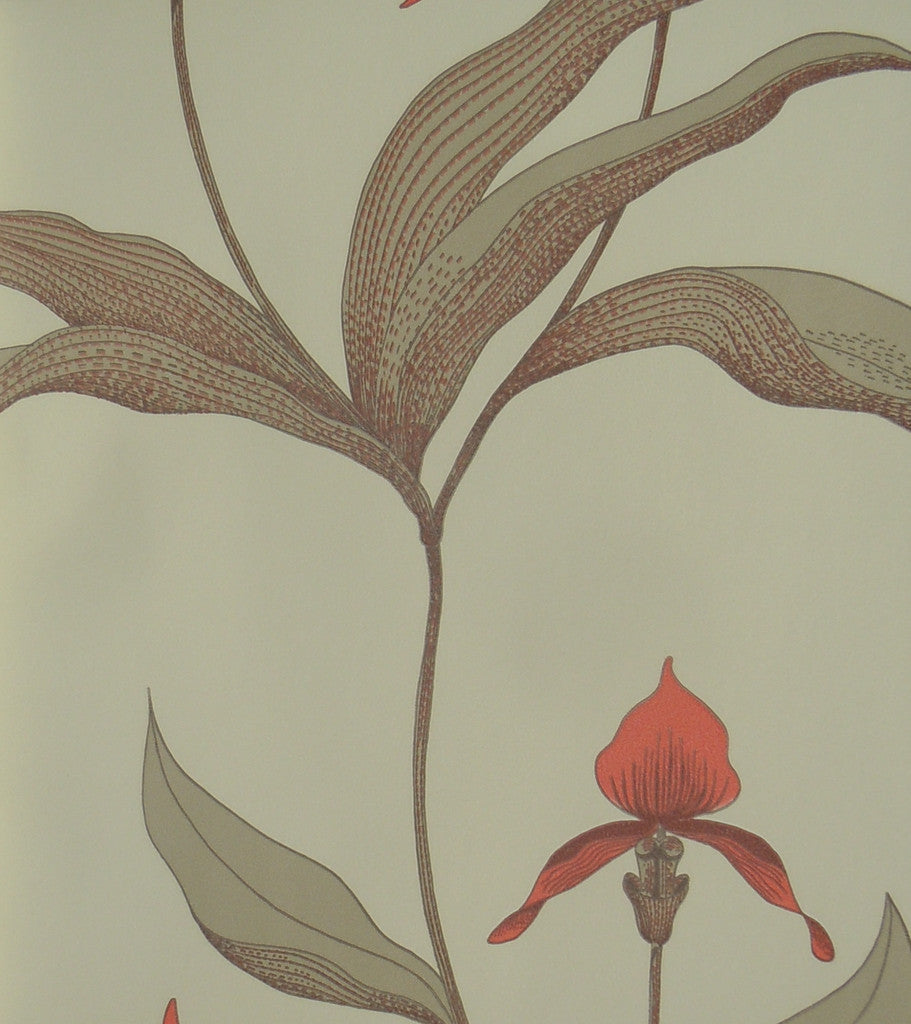 Cole & Son's Orchid Wallpaper 66/4033 from their Contemporary Collection