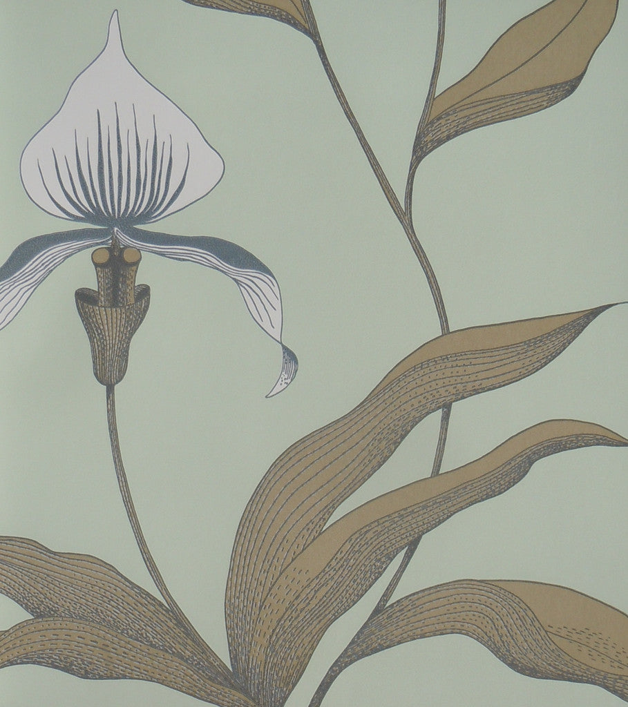 Cole & Son Orchid Wallpaper 66/4028 Contemporary Collection.