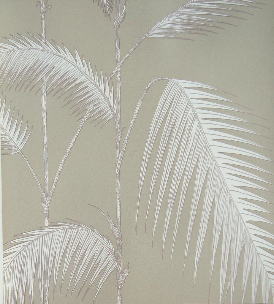 Palm Leaves Wallpaper 66/2013 Australia. Cole & Son from the contemporary Collection