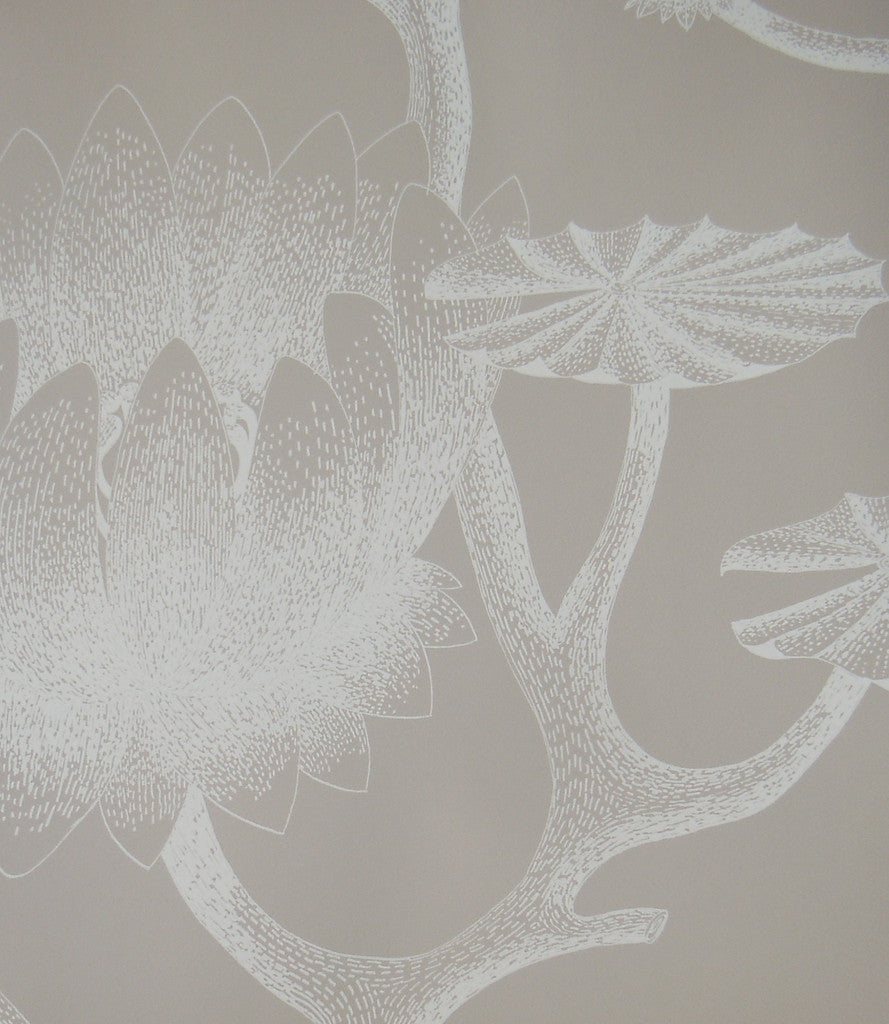 Cole & Son Wallpaper Australia | Lily Wallpaper 69/3110 from the Contemporary Collection