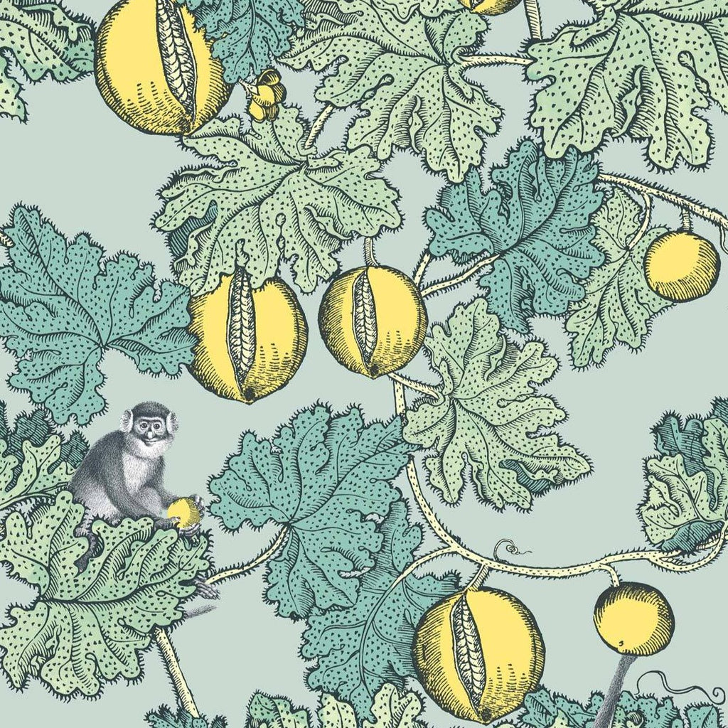Frutto Proibito Wallpaper 114/1002 from the Fornasetti Collection.