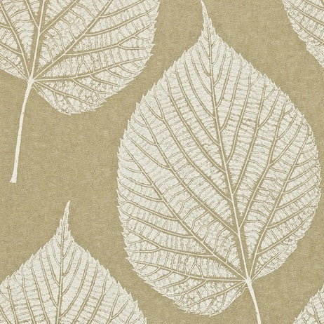 Harlequin Wallpaper - Leaf 110370 - Gold & Cream - Momentum Wallcoverings Volume 2