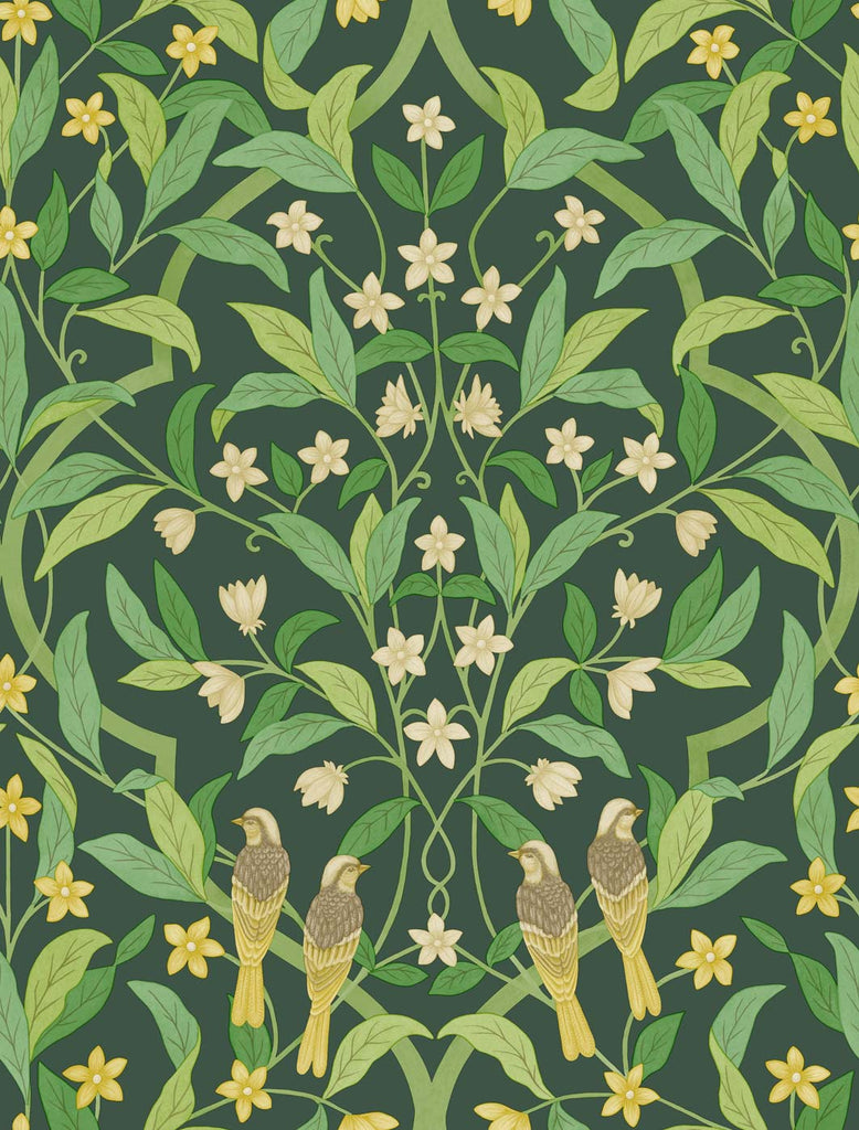 Cole & Son Wallpaper | Jasmine & Serin Symphony 117/10029