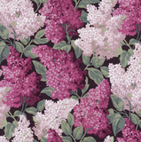 Lilac Grandiflora 115/15045 by Cole & Son