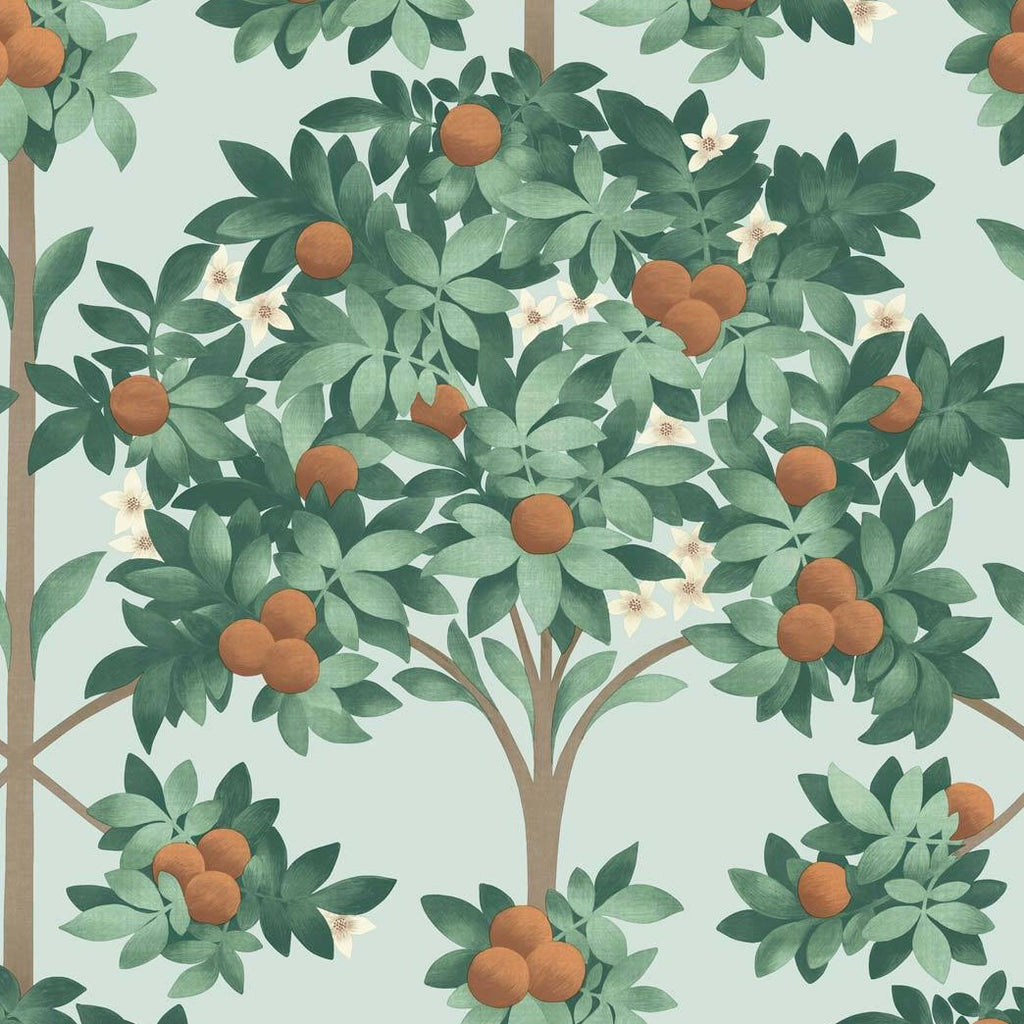 Orange Blossom Wallpaper 117/1004