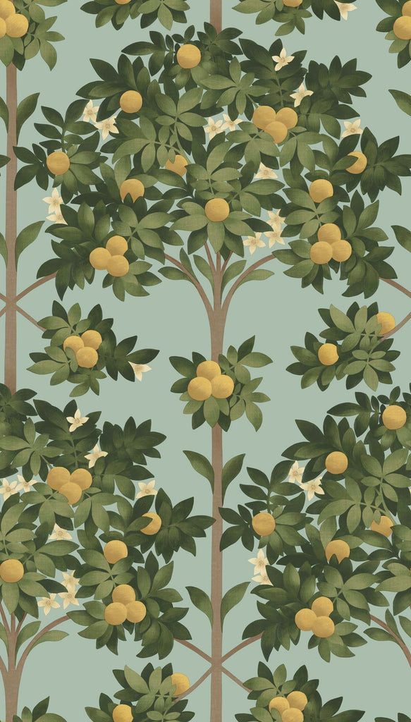 Cole & Son Wallpaper | Orange Blossom 117/1002