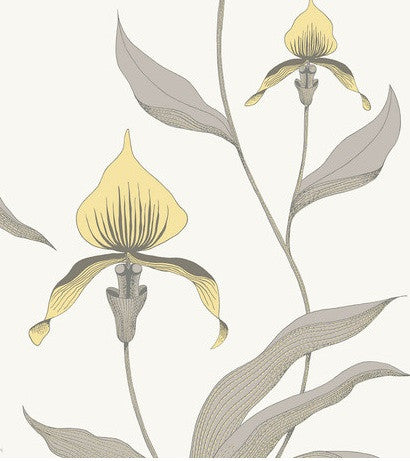 Orchid Wallpaper 95/10057 Restyled Cole & Son