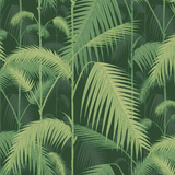 Palm Jungle Wallpaper 112/1003 Cole & Son Australia | Icons Collection