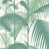Palm Jungle Wallpaper 95/1002 Australia Cole & Son