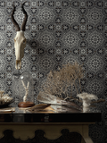 Cole & Son Wallpaper Australia | Piccadilly 94/8045 | Albemarle Collection