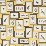 Sanderson Wallpaper, Picture Gallery in Yellow DVOY213396
