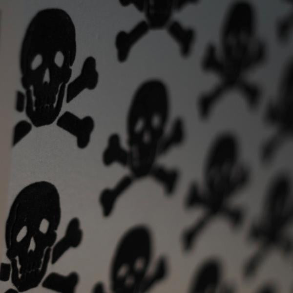 Skulls Wallpaper 09 by Beware the Moon