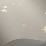 Cole & Son Stars Wallpaper 103/3013
