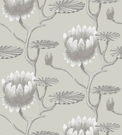 Cole & Son Wallpaper Restyled Summer Lily 95/4025 | Australia
