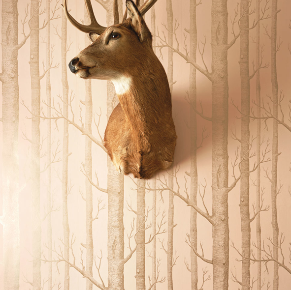 Cole & Son Wallpaper Woods 103/5024