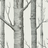 Woods Wallpaper 69/12147 Cole & Son Australia