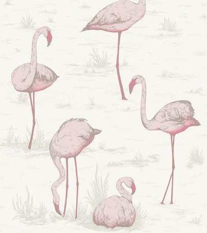 Flamingos Wallpaper Cole & Son 95/8045