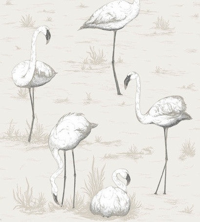 Flamingos Wallpaper 95/8046 Cole & Son