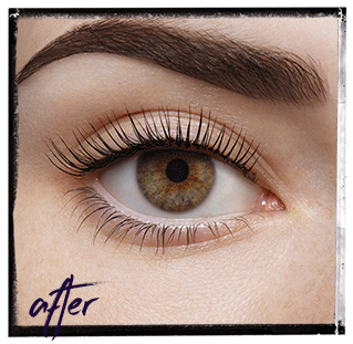 LVL's - Lash, Volume, Lift from Nouveau Lashes
