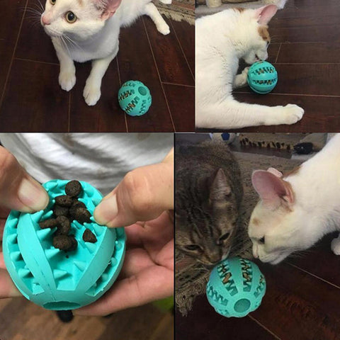 Dog & Cat Rubber Treat Ball / Teeth Cleaning Ball